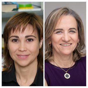 Valencia reúne a más de 1.200 expertos y expertas internacionales en liberación controlada de fármacos