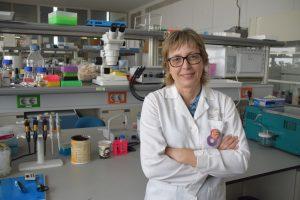 Nueva herramienta para el diagnóstico genético de la enfermedad de Wilson
